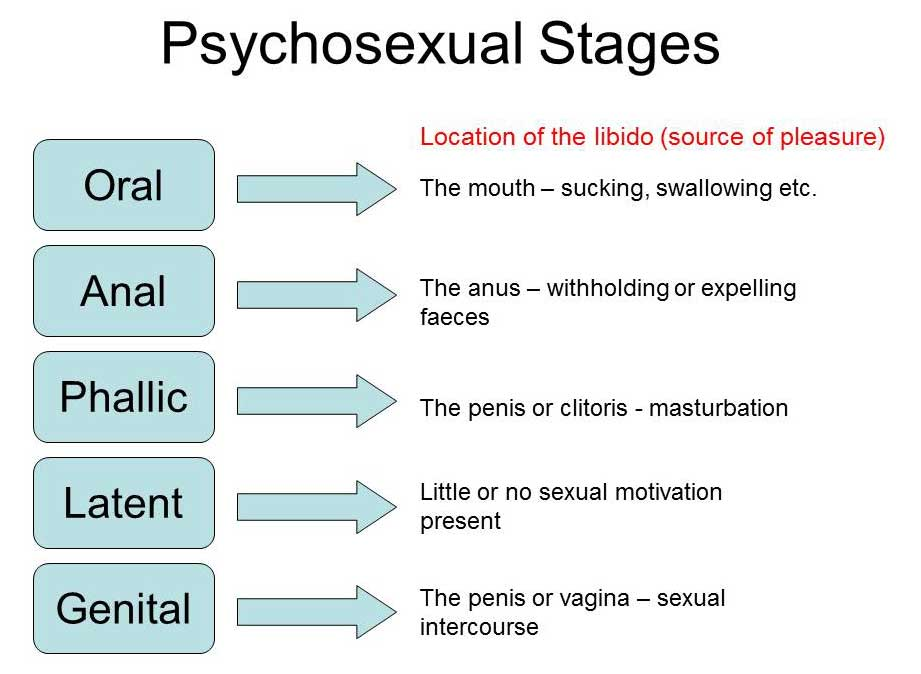 Psychosexual stages of development pdf
