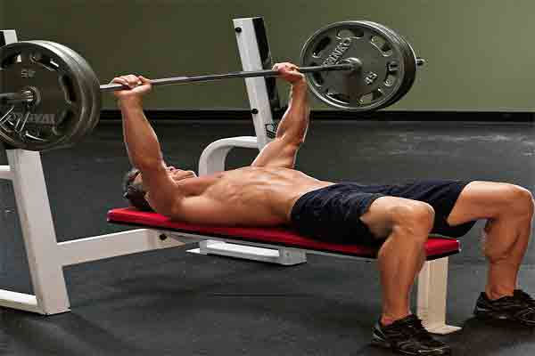 How much does a bench press cost