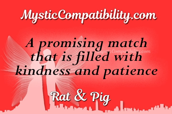 Rat and pig compatibility