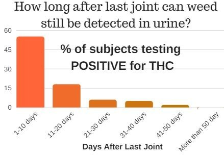 How to pass a urine test in a week