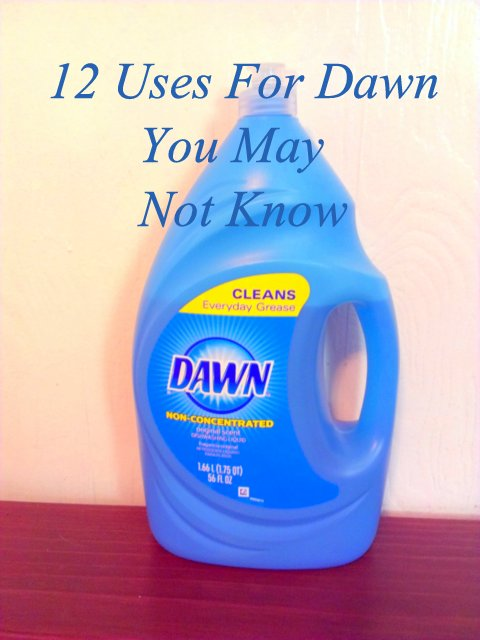 Can i use dish soap on my dog