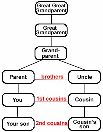 What do you call your cousins spouse