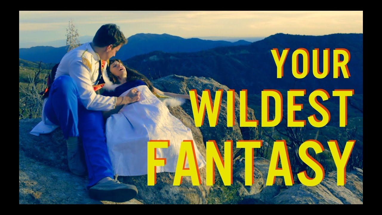 Meaning of wildest fantasy