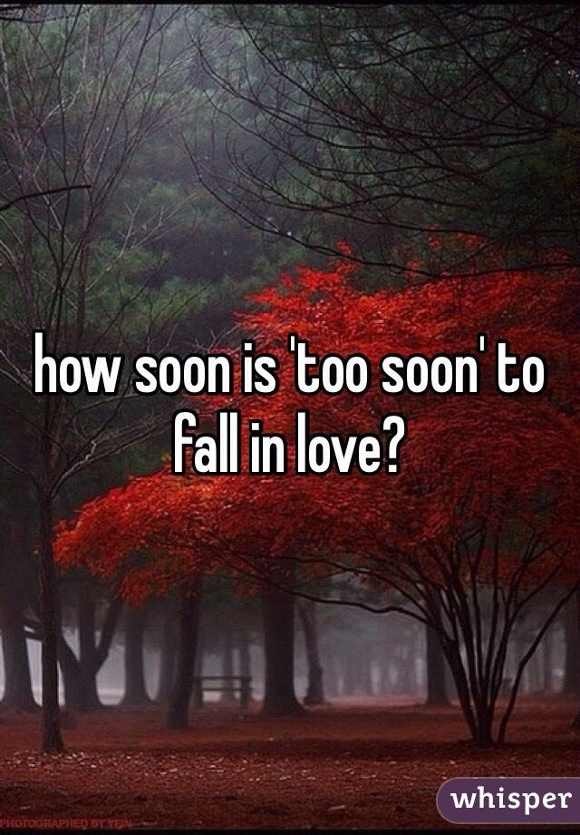 Is it too soon to fall in love