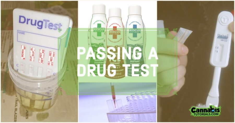 Does aspirin help pass urine test