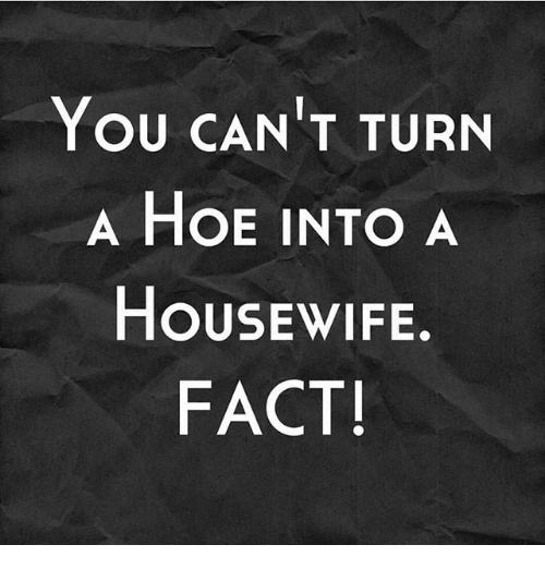 Can t turn a hoe into a housewife