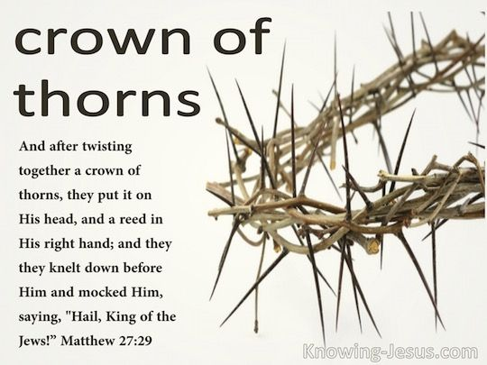 Crown of thorns meaning