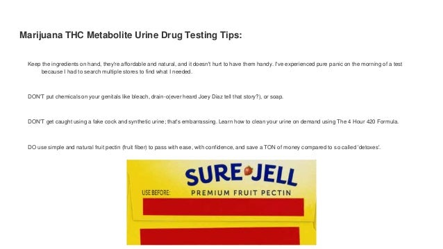 How to pass a drug test in 8 hours