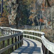 Romantic things to do in augusta ga