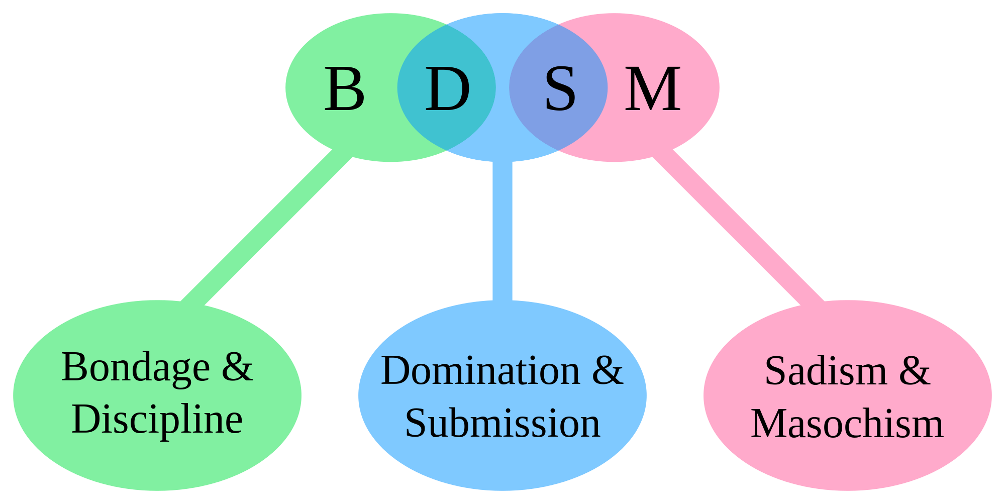 What does bdsm stand for